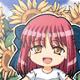 ヒマワリの咲く…
